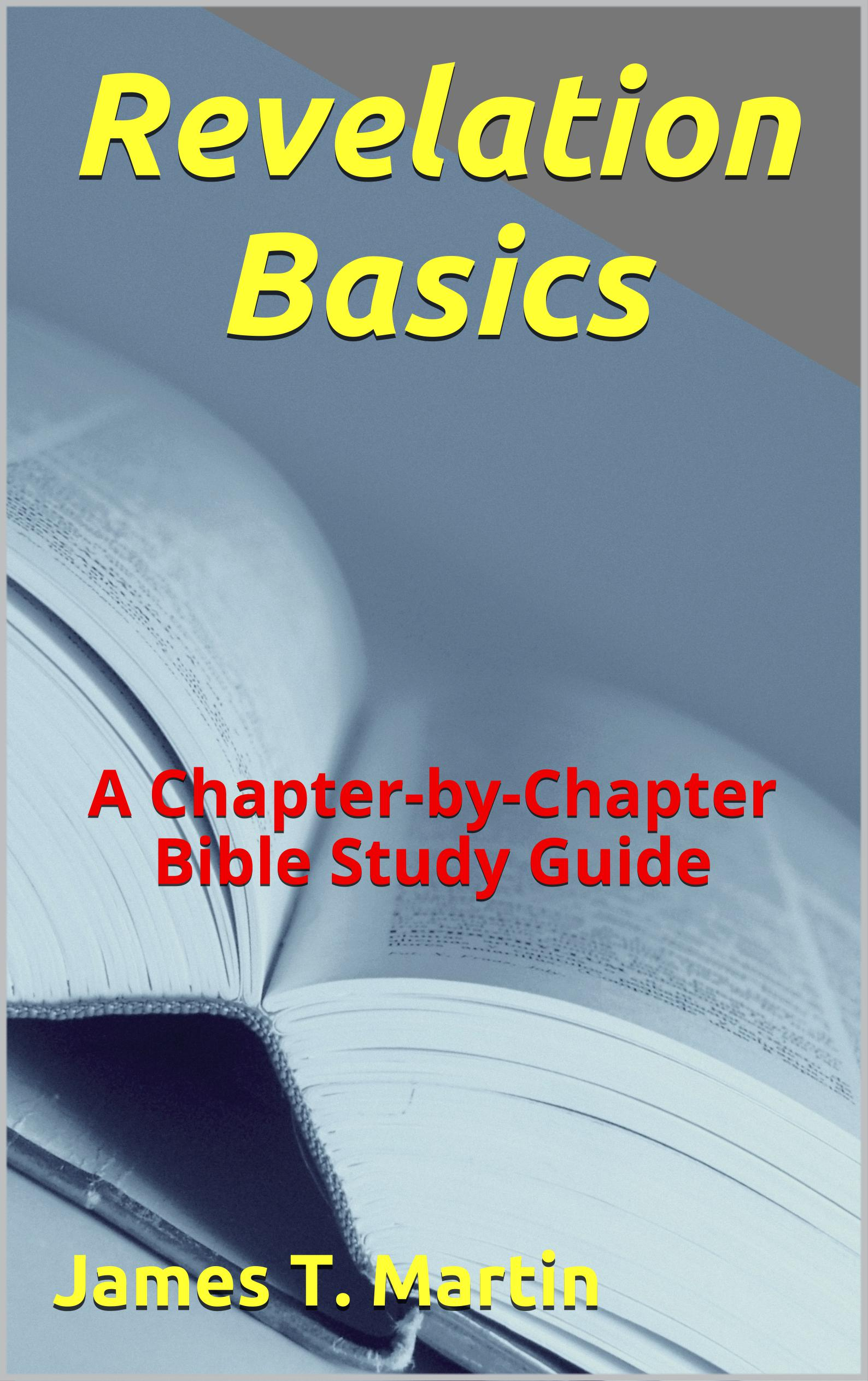 Basic Bible Study Guides - Amazing Discoveries